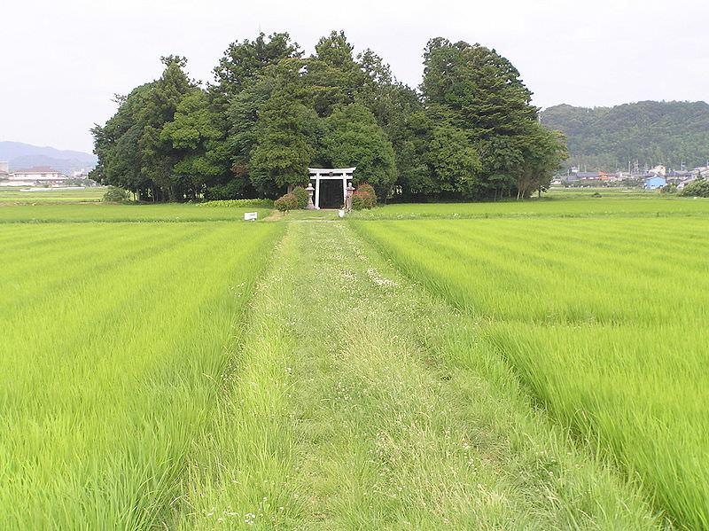 800px-Sasayama1